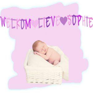 Geboorteslinger meisje welkom